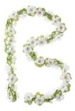 Basil flower garland, bloemenstreng, 130cm, wit