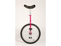 "FIETS EENWIELER 20"" ROSE IMPORT"