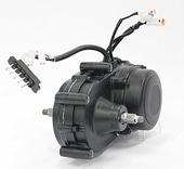 Bosch Motor Intuvia 250W 36 Volt Black BJ 2011-2013