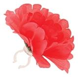 Basil losse bloem pioen rood
