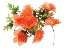 Basil bloemslinger pioen oranje, bloemenstreng, tangerine